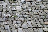 舗装 — ストック写真