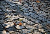 Pavimento — Fotografia Stock