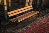 Bench in public park — Stock Photo