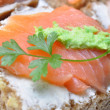 Sandwich with smoked salmon isolated — Stock Photo