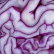Royalty-Free Stock Photo: Detail of a sliced red cabbage