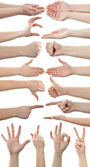 Set of many different hands over white background — Stock Photo