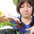 Woman cultivation garden isolated — Stock Photo
