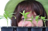 Caring gardener looking after young plants isolated — Stock Photo