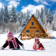 Stock Photo: Winter cottage