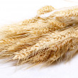 Royalty-Free Stock Photo: Close up of wheat nice detail background