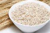 Porridge and Wheat ears on a white background — Stock Photo