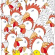 Chickens — Foto de Stock