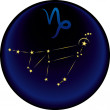 Vector de stock : Zodiac Capricorn Sign