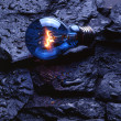 Stock Photo: Bulb on rocks