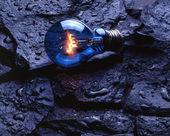 Bulb on rocks — Stock Photo