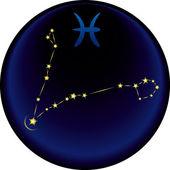 うお座の星座 — ストックベクタ