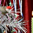 Decorative candle and birdy - Stock Photo