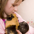 Little girl and her guinea pigs — Stock Photo #4115839