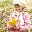 Little girl in autumn — Stock Photo