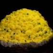 Basket full of yellow flowers at a local flower market — Stock Photo