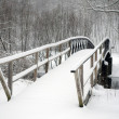 Snow Bridge — Stock Photo