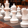 Large chess pieces — Stock Photo #5353899