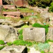 Rock garden - Stock Photo