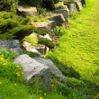 Rock garden — Stock Photo #4647730