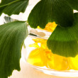 Ginko biloba essential oil with fresh leaves - beauty treatment — Stockfoto