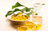 Ginko biloba essential oil with fresh leaves - beauty treatment — Stock Photo