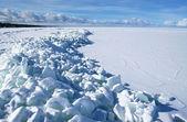 Zmrazené záliv — Stock fotografie