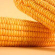 Stock Photo: Close-up yellow sweetcorn