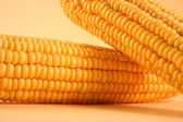 Close-up yellow sweetcorn — Stock Photo