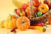 Colored vegetables — Stock Photo