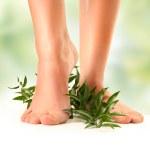 yeşil üzerinde ayak — Stok fotoğraf
