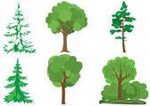 Set of vector green trees — Stock Vector