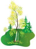Vector illustration with autumn birch — Stock Vector