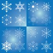 Set of vector beautiful snowflakes — Stock Vector