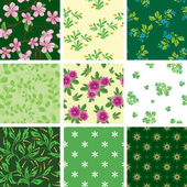 Set of various vector seamless floral pattern — Stock Vector