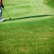 Grass,golf - Foto Stock