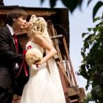 Groom,bride,kiss — Stock Photo #4532692
