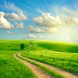 Stockfoto: Summer landscape with green grass, road and clouds