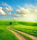 Paisaje de verano con hierba verde, la carretera y las nubes — Foto de Stock