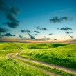 Summer landscape with green grass, road and clouds — Stock Photo #4127302