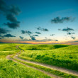 Summer landscape with green grass, road and clouds - Stock Photo