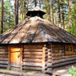 Small old wooden house in wood — Stock Photo