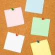 Blank notes on cork board — Stock Photo #5043709