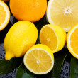 图库照片: Lemon, orange and grapefruit