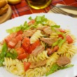 Tuna salad with lettuce and tomato — Stok fotoğraf
