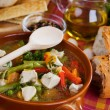 Chicken and vegetable soup — Foto Stock