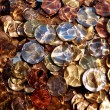 Euro coins under water - Stock Photo