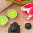 Spring zen-like spa — Stock Photo #4833625