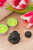 Spring zen-like spa — Stock Photo
