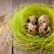 Foto Stock: Quail eggs